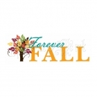 Forever Fall  Collection