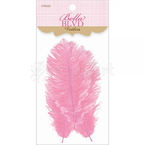 Cotton Candy - Feathers - Bella BLVD