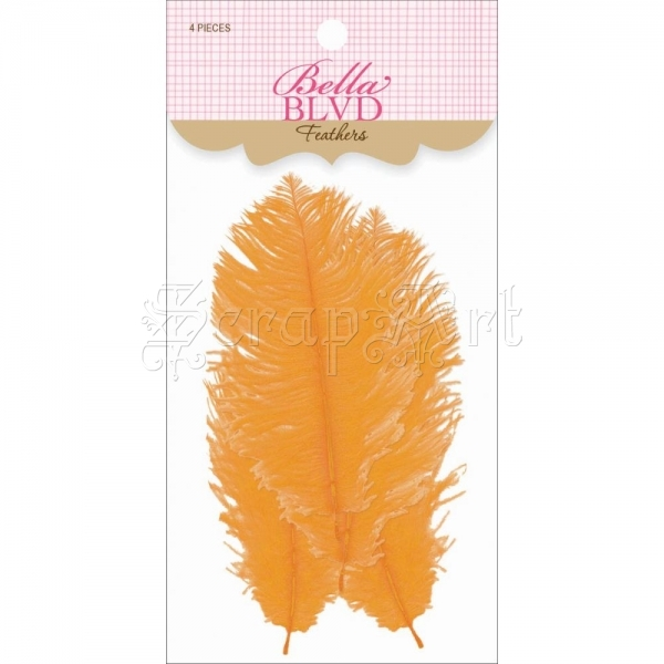 Orange - Feathers - Bella BLVD