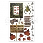 Rustic Pictures Stickers - FabScrap